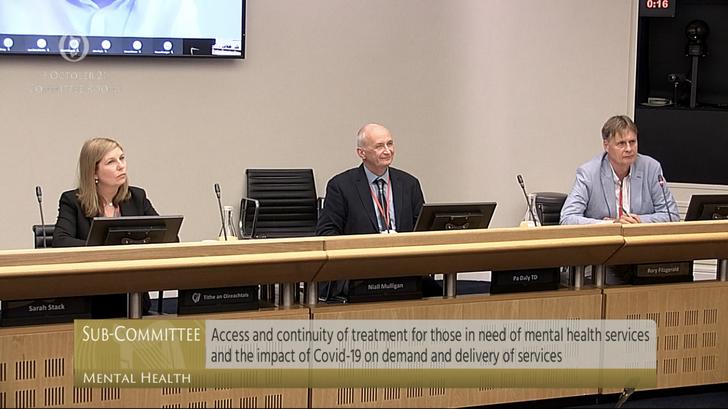 Samaritans Ireland Representatives before Sub-Committee on Mental Health