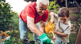 Legacy-gardening-image.jpg