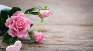 funeral_flowers.jpg
